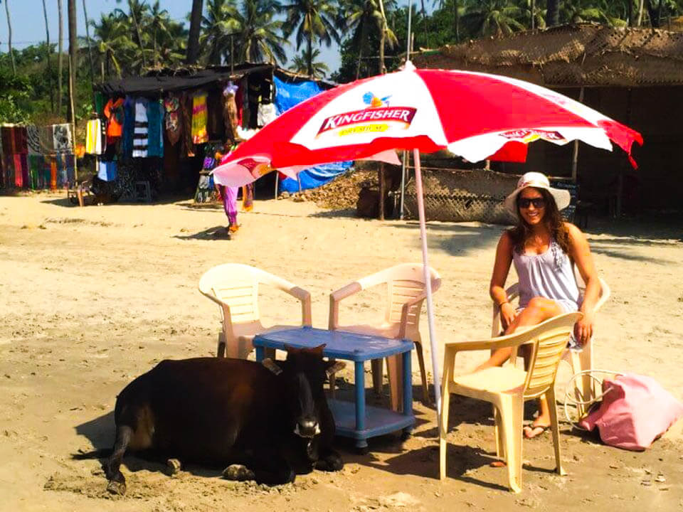 Chilling-with-a-cow-in-Goa