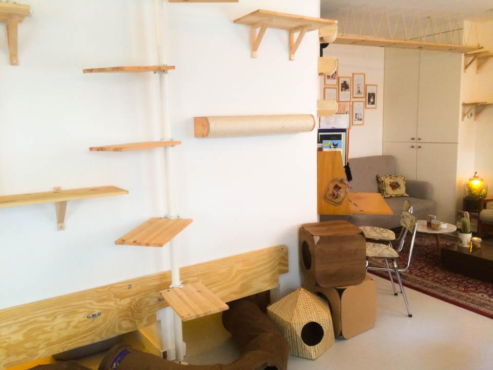 Cat_Cafe_Interior