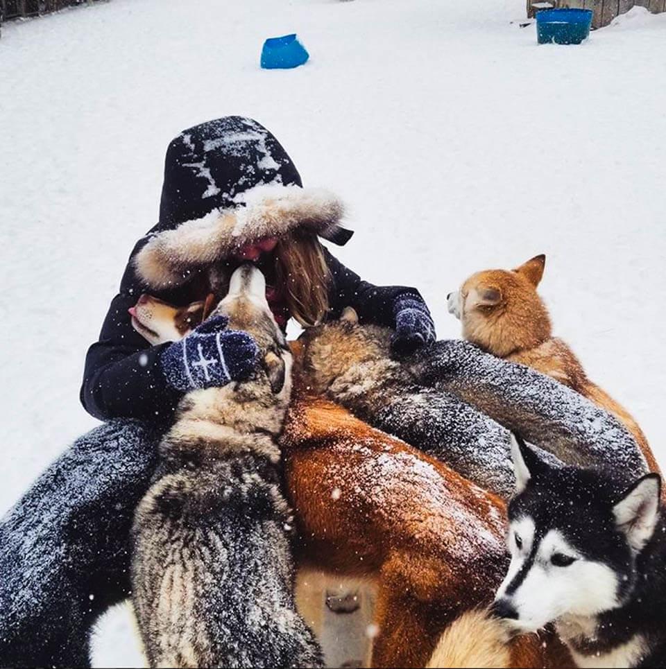 Kate with the huskies after dog sledding