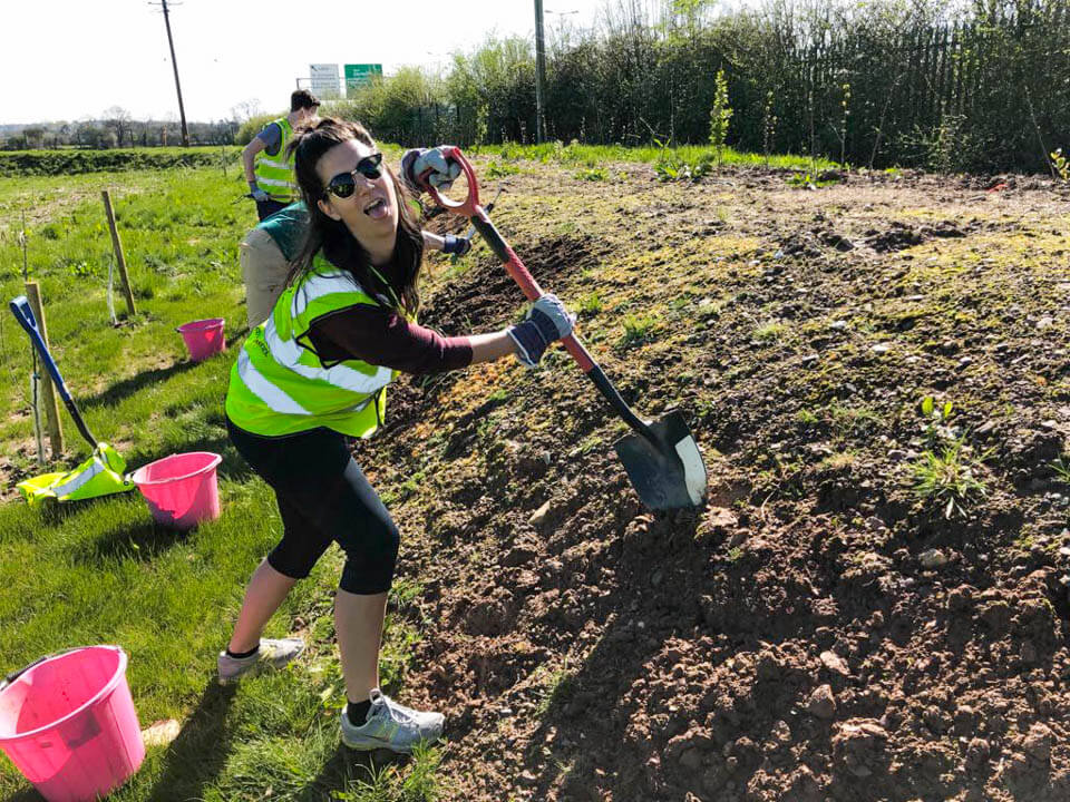 Volunteer at Field of Dream in Cork