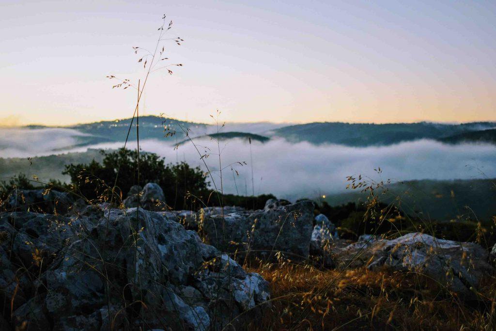 Jordan_Ajloun-Forest-Reserve_small