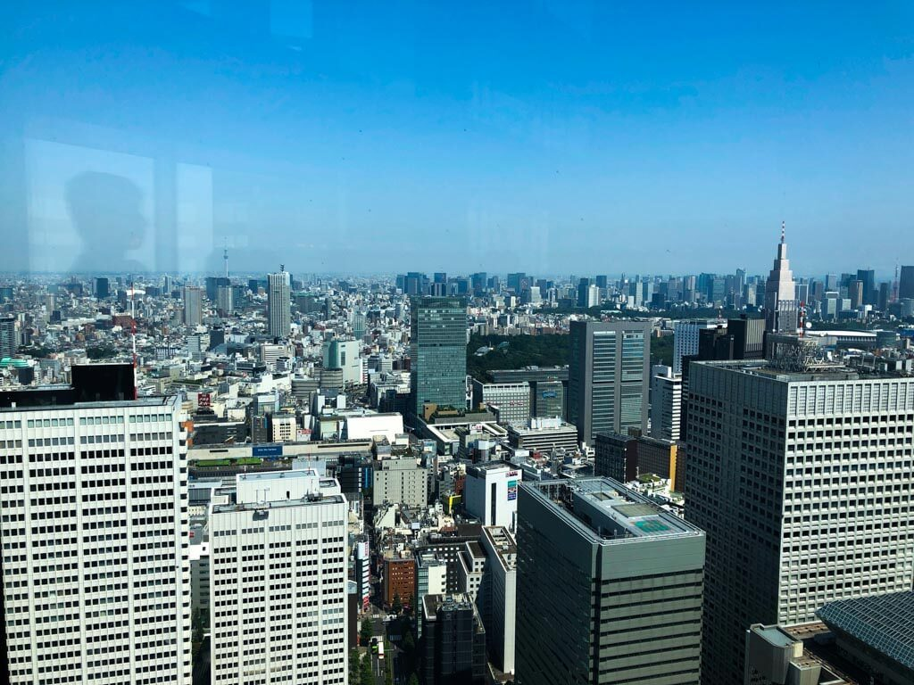 Tokyo on a budget - Free-view-from-Tokyo-Metropolitan-Government-Building
